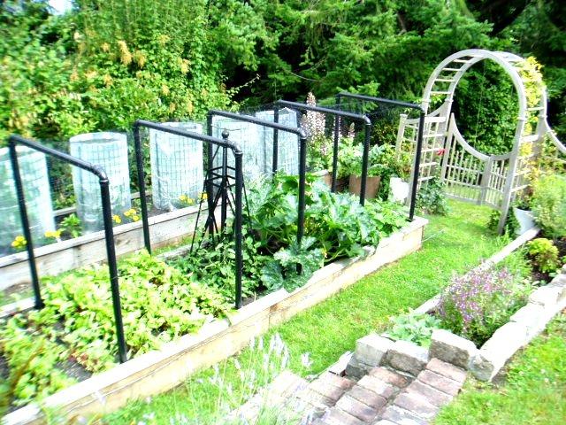 Gardens(3)